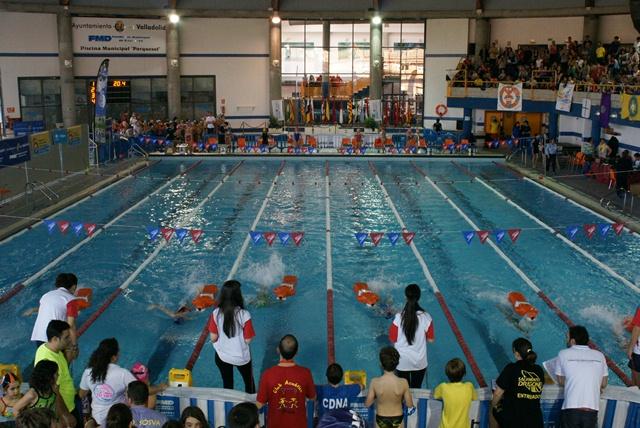 Resultados campeonato de espa a benjam n y alev n for Piscinas municipales palencia